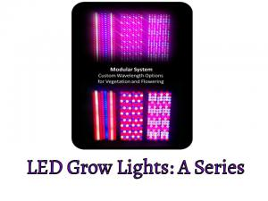 LED Grow Lights: A Series