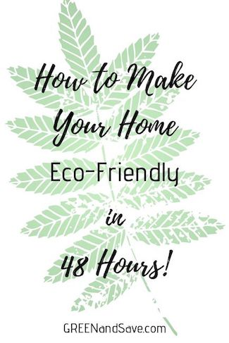 How to Make your Home Eco-Friendly in 48 Hours