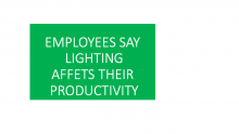 Employees Say Lighting Affect Their Productivity